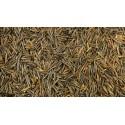 Ryż dziki cena 500g USA