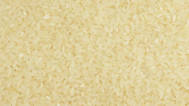Ryż do sushi cena 1kg z Włoch