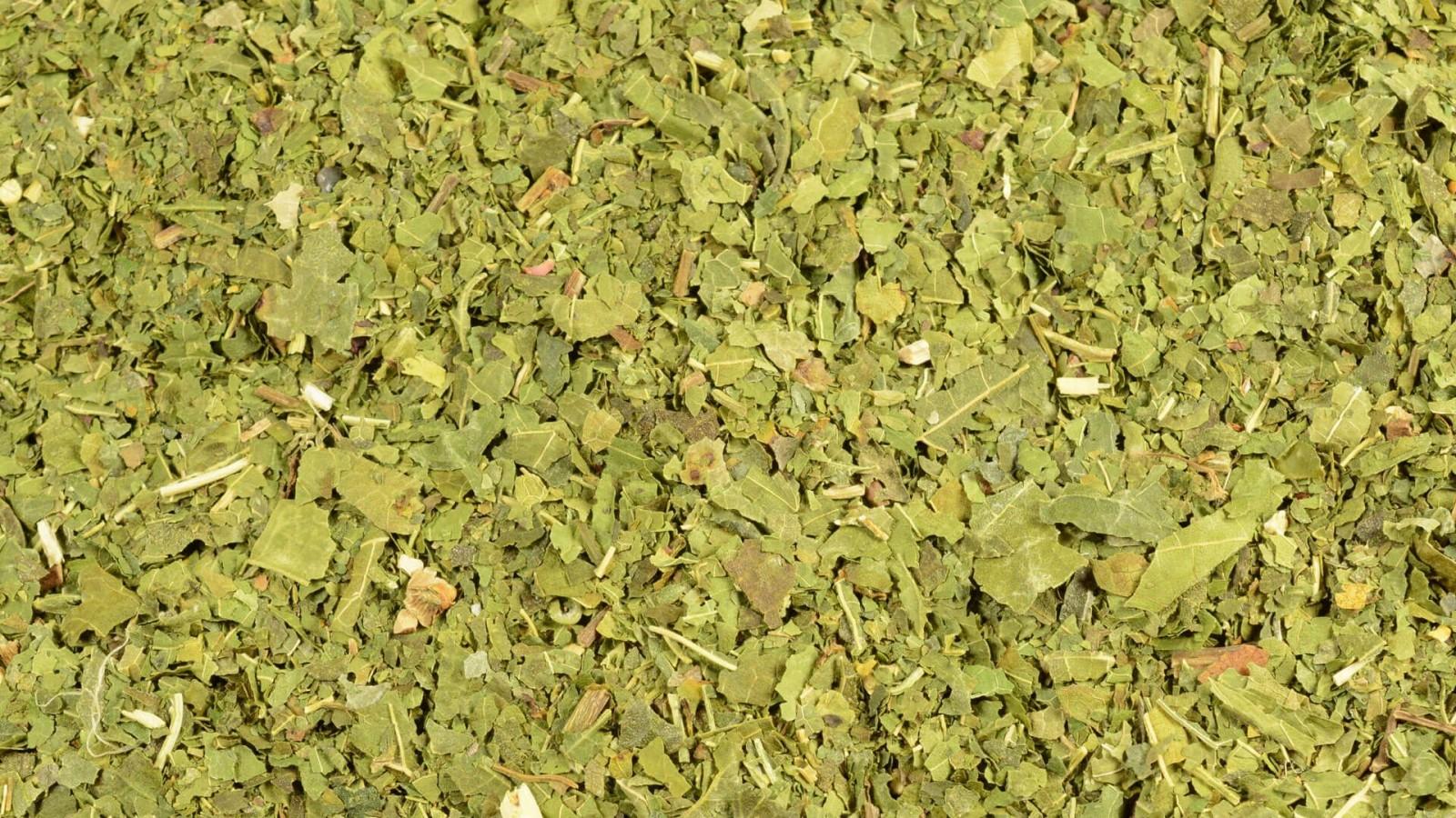 Morwa biała cena suszona herbata 500g