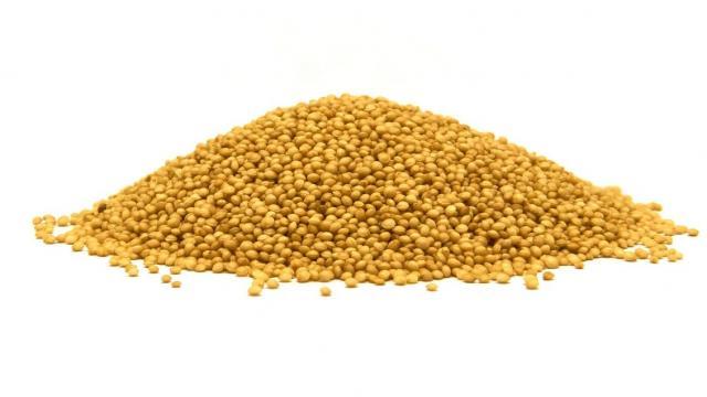 Amarantus cena 1kg ziarno Szarłat nasiona