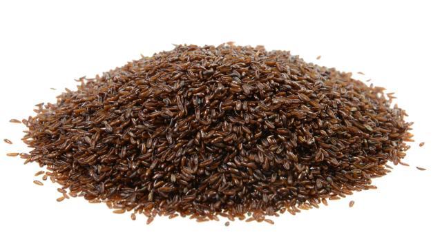 Babka płesznik cena 1kg nasiona